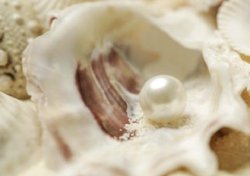 真珠パウダー